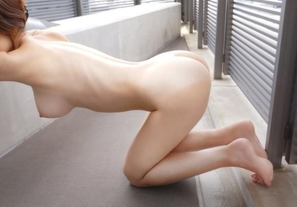 【ヌード画像】裸の四つん這い美女を征服したいw(31枚) 10